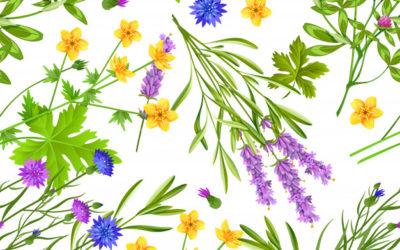 Masaje con pindas herbales